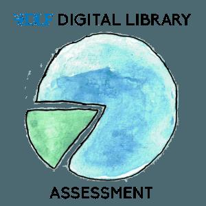 DLF Digital Library Assessment