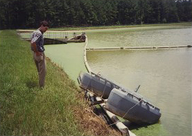 Photograph of Contractor Accessing Flood Damage at Wastewater Treatment Pond, Byron, Peach County, Georgia, 1994 July 8, Peach Public Libraries.