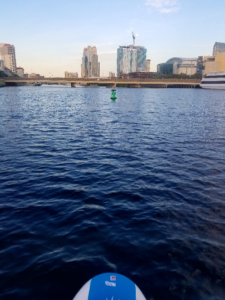 View of water from paddleboard